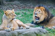 Memphis, Tennessee - Memphis Zoo