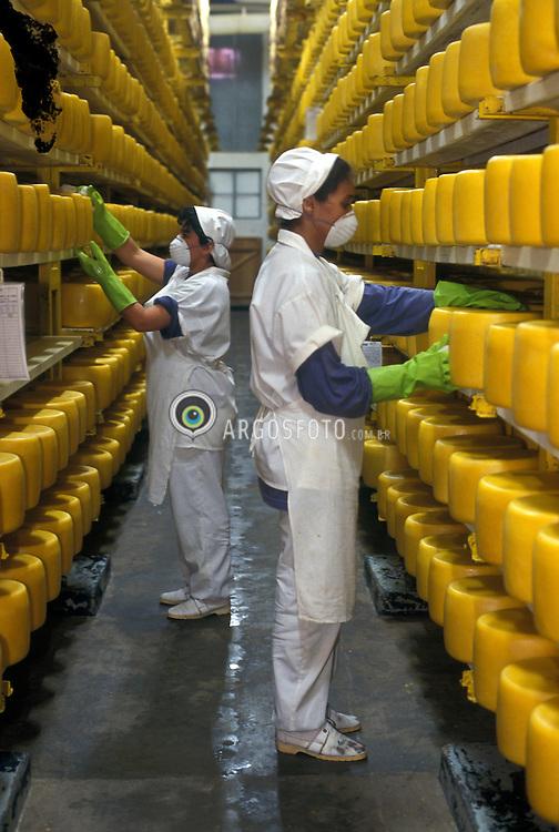 Industria de alimentos, laticinios, fabrica de queijo..Queijo Faixa Azul do Grupo Vigor./ Faixa Azul Cheese, Vigor Company..Foto © Rubens Chaves/Argosfoto