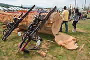 Antique chainsaws