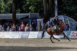 MÖLLER Jörg (GER), Casado 8<br /> Paderborn - OWL Challenge 5. Etappe BEMER Riders Tour 2019<br /> Finale Mittlere Tour (CSI3*/CSIU25-EY Cup) <br /> Wertung zum European Youngster Cup<br /> Springprüfung mit Stechen<br /> Prüfung zählt für das Longines Ranking <br /> 15. September 2019<br /> © www.sportfotos-lafrentz.de/Stefan Lafrentz