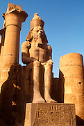 EGYPT, THEBES, LUXOR TEMPLE Ramses II and Colonnade of Amenophis