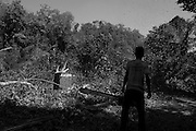 A logger in the forest cutting down trees. Forest Village, between 16 and 17 miles from Taungoo. Myanmar, February 2014.