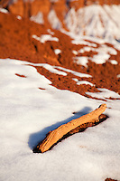 Scenic image of juniper branch and snow in Capitol Reef National Park.