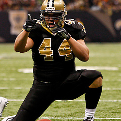 Oct 31, 2010; New Orleans, LA, USA; New Orleans Saints running back Heath Evans (44) reacts after a reception during the second half against the Pittsburgh Steelers at the Louisiana Superdome. The Saints defeated the Steelers 20-10.  Mandatory Credit: Derick E. Hingle