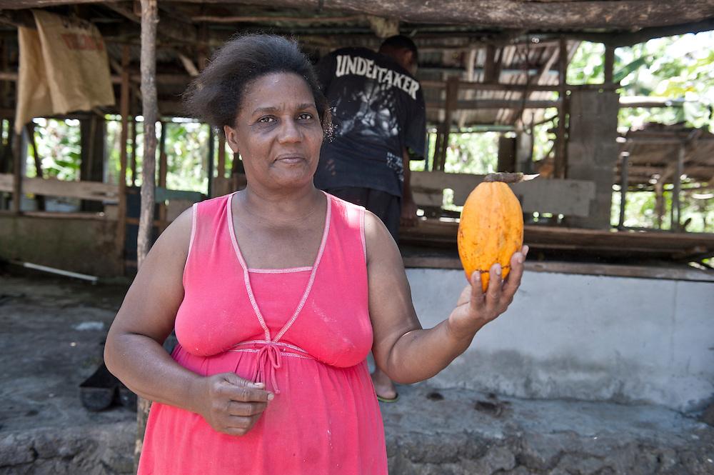 Cocoa near Nagua, Dominican Republic, Caribbean