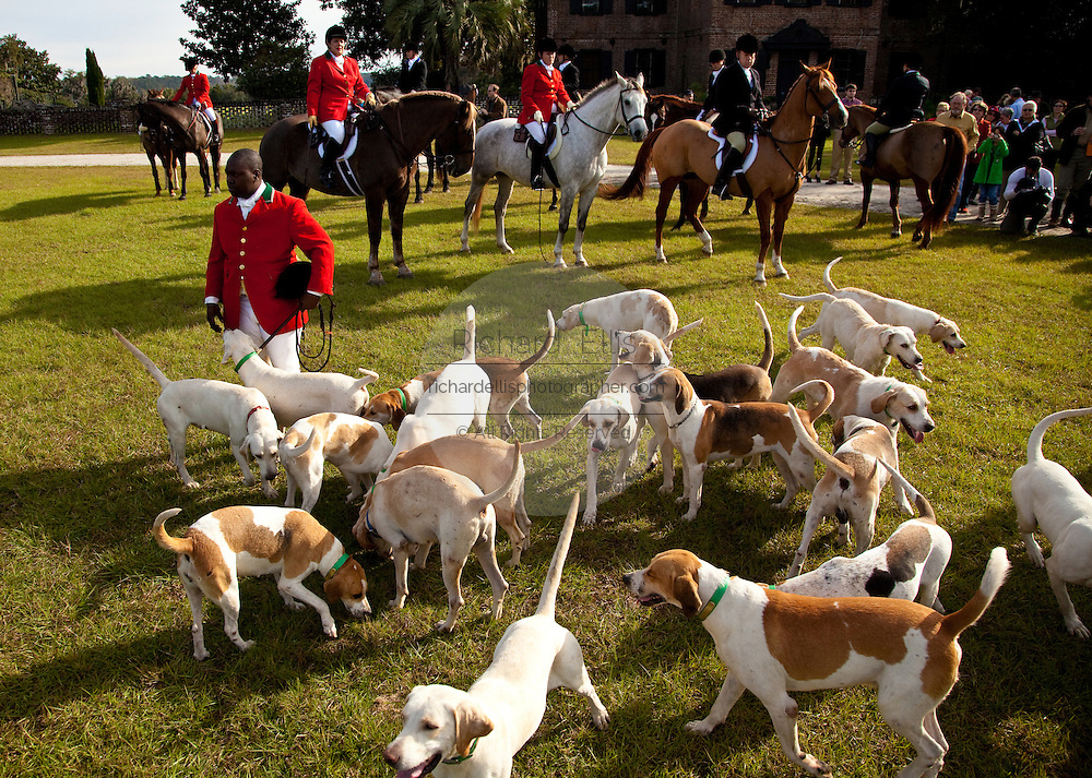 Jamie Greene, master of the hounds at the Middleton Place Fox Hunt before the start of the hunt with his hounds on the greensward of the plantation house at Middleton Place plantation in Charleston, SC.