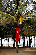 Vietnam's national flag, a red banner with a yellow star in the center, hangs from a tree on Cua Dai Beach, Hoi An, Vietnam, Southeast Asia