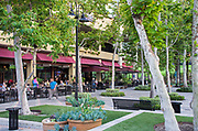 Stadium Brewing Company Aliso Viejo Town Center