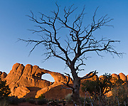 "Skyline Arch eroded within the Slick Rock member of Entrada Sandstone in Arches National Park, Utah, USA. Fractal branching of a twisted dead tree frames the arch. Published in ""Light Travel: Photography on the Go"" by Tom Dempsey 2009, 2010."