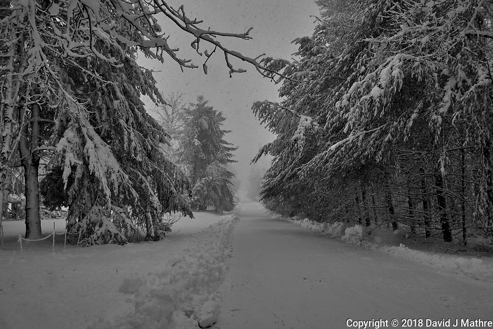 Late Winter Nor'easter. Image taken with a Leica CL camera and 18 mm f/2.8 lens (ISO 100, 18 mm, f/3.2, 1/250 sec).