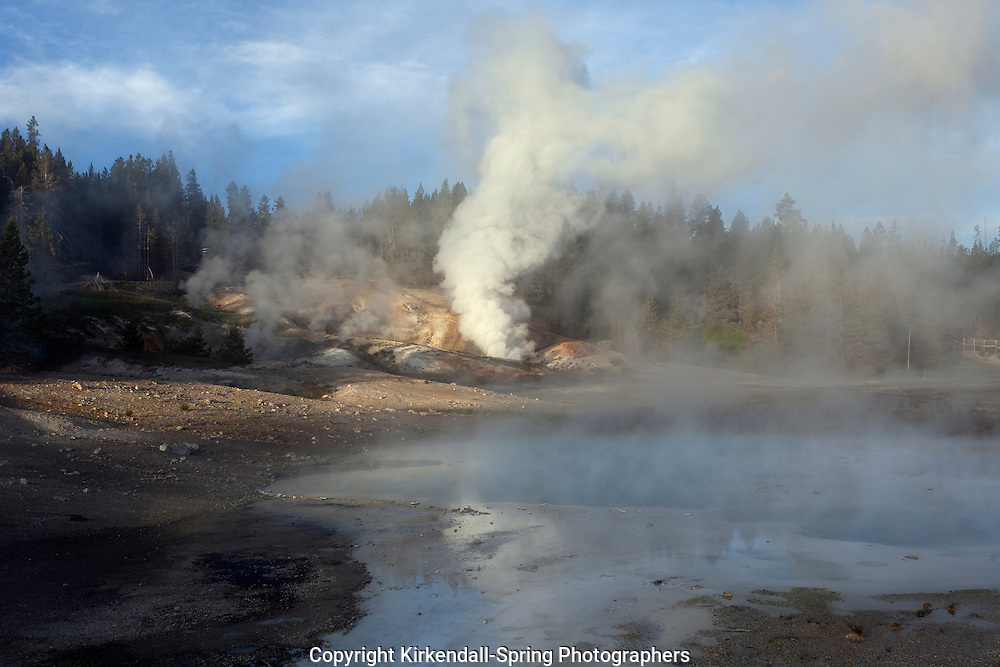 WY00544-00...WYOMING - Norris Geyser Basin in Yellowstone National Park