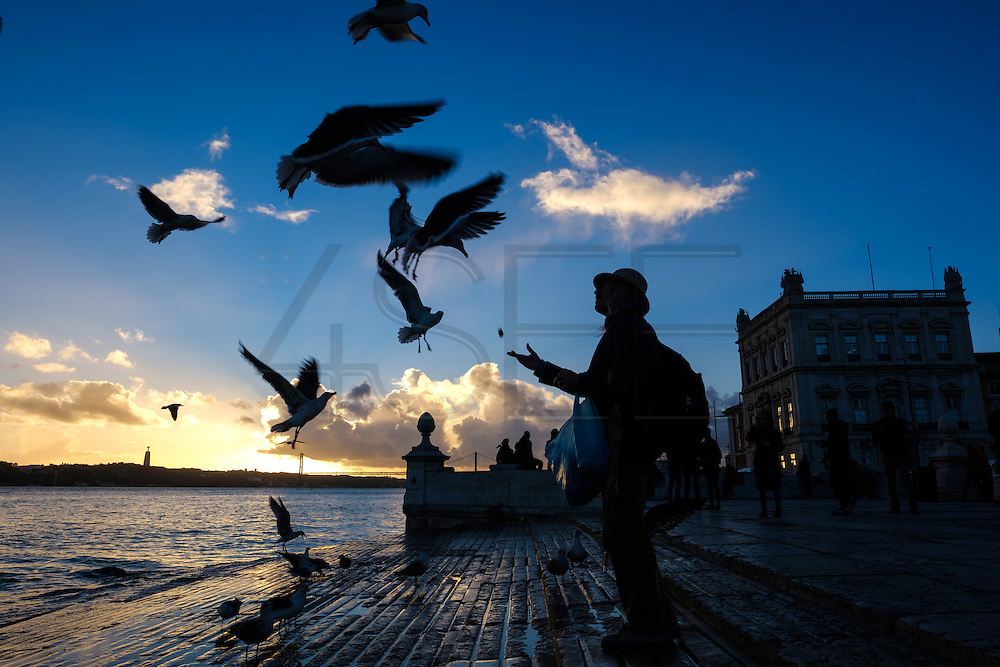 a man feeds seagulls at Cais das Colunas in Terreiro do Paço, also know as Praça do Comércio (Commerce Square). This square is the largest in Lisbon and is located just by the river Tagus. From left to right can be seen Augusta Street Arch and the equestrian statue of King Joseph I.