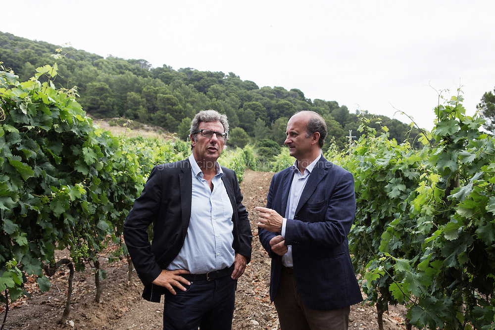GORGONA, ITALY - 27 JUNE 2014: (L-R) Penitentiary Director Carlo Alberto Mazzerbo and President of Marchesi de' Frescobaldi Lamberto Frescobaldi chat in the one-hectare vineyard cultivated by inmates, in Gorgona, Italy, on June 27th 2014.<br /> <br /> Gorgona is the smallest island of the Tuscan archipelago, located 18 miles west of Livorno, which became an experimental agricultural penal colony in 1869.<br /> <br /> The &ldquo;Frescobaldi per Gorgona&rdquo; project  provides inmates the opportunity to learn winemaking techniques and job skills under the supervision of the company&rsquo;s agronomists and winemakers, led by Vice President Lamberto Frescobaldi himself. Fifty inmates contributed to the production of Gorgona, a white wine made from Vermentino and Ansonica grapes planted on the island of Gorgona in the Tyrrhenian Sea, close to the Tuscan coast. The Frescobaldi family purchased a hectare of old vineyards and will expand with more vineyards in the upcoming months. Total production is only 2,700 bottles, but 1,000 of the bottles will reach the US market through Frescobaldi importer Folio Fine Wine Partners, in the Fall.<br /> <br /> Born in August 2012, the Gorgona initiative was financed by the Department of Penitentiary Administration and accomplished through the collaboration of the Gorgona Penitentiary's Directorate and Marchesi de&rsquo; Frescobaldi.