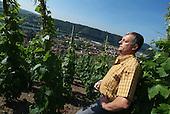 France - Côtes du Rhône: Domaine Jamet