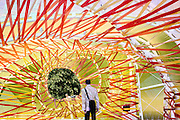 Inside the 2015 Serpentine Pavillion, designed by the architecture studio, Selgascano.<br /> Jos&eacute; Selgas and Luc&iacute;a Cano established Selgascano in Madrid, Spain, in 1998.
