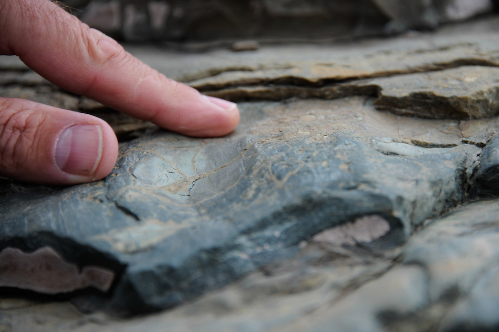 Scratches in rock at the location of a former glacier at the base of Mount Clements at Logan Pass, Glacier National Park, Montana , Tuesday, October 7, 2014. According to Dan Fagre Ph.D. glacier movement caused scratches in rock and is evidence that a glacier was there and in motion.