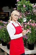 Portrait of a senior florist making notes in garden center