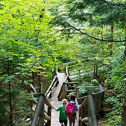 A young brother and sister walking down to Lost River Gorge in New Hampshire's White Mountains. North Woodstock.