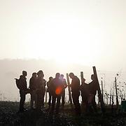 COVIBIO, consortium of italian wine producers