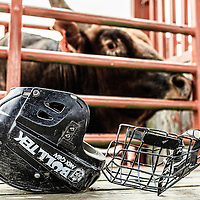 2016 Rodeo Photography