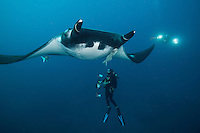 Giant Manta Ray and Photographers<br /> <br /> Shot in Mexico