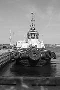 Halifax, Nova Scotia, tugboat in the harbour