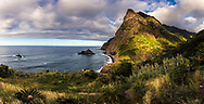 Evergreen cliffs of Madeira coastline
