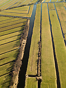 Nederland, Zuid-Holland, Gemeente Vlist, 20-02-2012; Krimpenerwaard met Polder Bovenkerk en Polder.Vlist Westzijde (li). Het stukje land in de vorm van een driehoek heet De Geer. Kenmerkend voor de inrichting van de polder zijn de regelmatig gevormde ontginningsblokken, zogeheten cope-ontginningen..Krimpenerwaard with various polders. Characteristic for the 'design' of the polder are the regularly shaped reclamation blocks, known as cope reclamations. .luchtfoto (toeslag), aerial photo (additional fee required);.copyright foto/photo Siebe Swart.