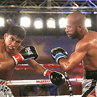 Ricardo Rodriguez (L) and Jonathan Vidal trade blows during a Telemundo Boxeo boxing match at the A La Carte Pavilion on Friday,  March 13, 2015 in Tampa, Florida.  Rodriguez won the bout. (AP Photo/Alex Menendez)