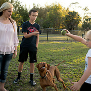 ROYAL PALM BEACH, FLORIDA, MARCH 15, 2017<br /> Cynthia Greaux  and her children; Tyler, 14, and Chloe, 8, play with a neighbor's dog in the park a short walk from their house. Greaux is able to use vouchers to pay for their enrollment at a private school that specializes in educating children with dyslexia.<br /> (Photo by Angel Valentin/Freelance)