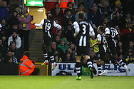 Picture by Paul Chesterton/Focus Images Ltd.  07904 640267.10/12/11.Demba Ba of Newcastle United scores his sides equalising goal and celebrates during during the Barclays Premier League match at Carrow Road Stadium, Norwich.