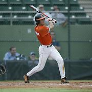 2003 Hurricanes Baseball