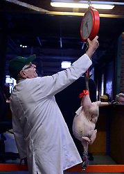 © Licensed to London News Pictures. 21/12/2012. Reading, UK A worker weighs a bird. Auction house Thimbleby and Shorland holds its annual traditional christmas poultry sale today 21st December 2012 in Reading, Berkshire. Over 500 lots of fresh turkeys, chickens, geese and duck, all oven ready and rough plucked were available for sale. The general public in the UK are reported  to spend over 300 million GBP on turkey over the Christmas season.. Photo credit : Stephen Simpson/LNP