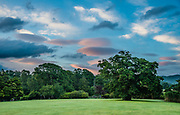 """Lenticular clouds turn pink at sunrise over the Kings Oak at Irton Hall, in Lake District National Park, Cumbria county, England, United Kingdom, Europe. Traditional stories tell of Henry VI sheltering at Irton Hall under the Kings Oak, shown here, now 1000 years old. The then owner, Irton a Yorkist, refused him lodging, so King Henry VI spent the night under the great oak. The next day Henry VI fled over the fell to Muncaster where he was welcomed and so impressed with his reception he presented a glass bowl to Muncaster which is known as """"The Luck of Muncaster."""" Irton Hall now offers luxurious Bed & Breakfast accommodation.  England Coast to Coast hike with Wilderness Travel, day 2 of 14. [This image, commissioned by Wilderness Travel, is not available to any other agency providing group travel in the UK, but may otherwise be licensable from Tom Dempsey – please inquire at PhotoSeek.com.]"""
