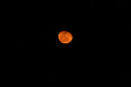 Orange Moon of Ohio