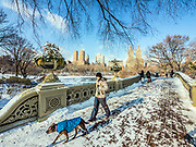Bow Bridge, Manhattan, Central Park