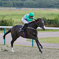 Lingfield 12th August