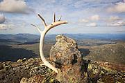 Tur til fjellet Fongen i Tydal/Selbu, Sør-Trøndelag. 1440 moh.