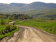 Near Glen Sutton, Eastern Townships, Quebec.