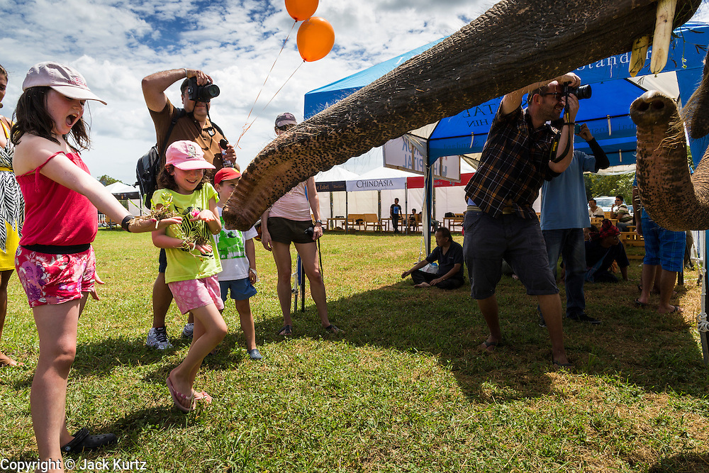 """28 AUGUST 2013 - HUA HIN, PRACHUAP KHIRI KHAN, THAILAND:   MAXINE RECHTER, 11, and her sister, CHARLOTTE RECHTER, 7, feed an elephant grass at the King's Cup Elephant Polo Tournament in Hua Hin, Thailand. The tournament's primary sponsor in Anantara Resorts and the tournament is hosted by Anantara Hua Hin. This is the 12th year for the King's Cup Elephant Polo Tournament. The sport of elephant polo started in Nepal in 1982. Proceeds from the King's Cup tournament goes to help rehabilitate elephants rescued from abuse. Each team has three players and three elephants. Matches take place on a pitch (field) 80 meters by 48 meters using standard polo balls. The game is divided into two 7 minute """"chukkas"""" or halves. There are 16 teams in this year's tournament, including one team of transgendered """"ladyboys.""""   PHOTO BY JACK KURTZ"""