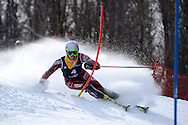 08 MAR 2013: Joonas Rasanen of the University of New Mexico during the Men's Slalom competition at the 2013 NCAA Men and Women's Division I Skiing Championship held at the Middlebury Snowbowl in Middlebury, VT. Rasanen placed first to win the national title. © Brett Wilhelm