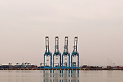 &quot;Cargo Quartet&quot;<br /> Port Newark Cargo Cranes<br /> Elizabeth, New Jersey
