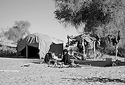 morning scene at a sahel tent