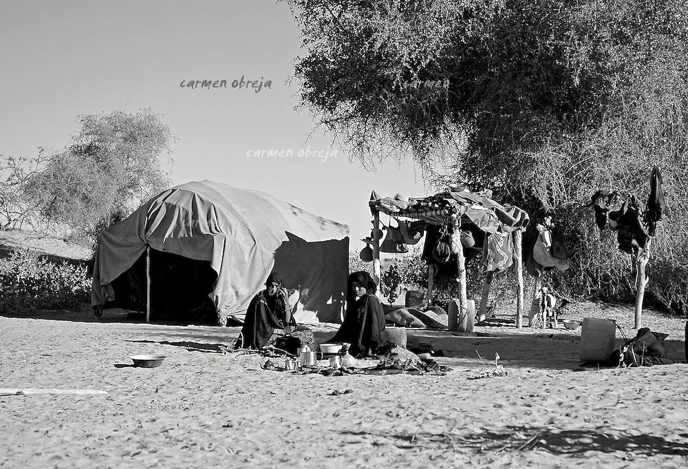 morning scene at a sahel tent