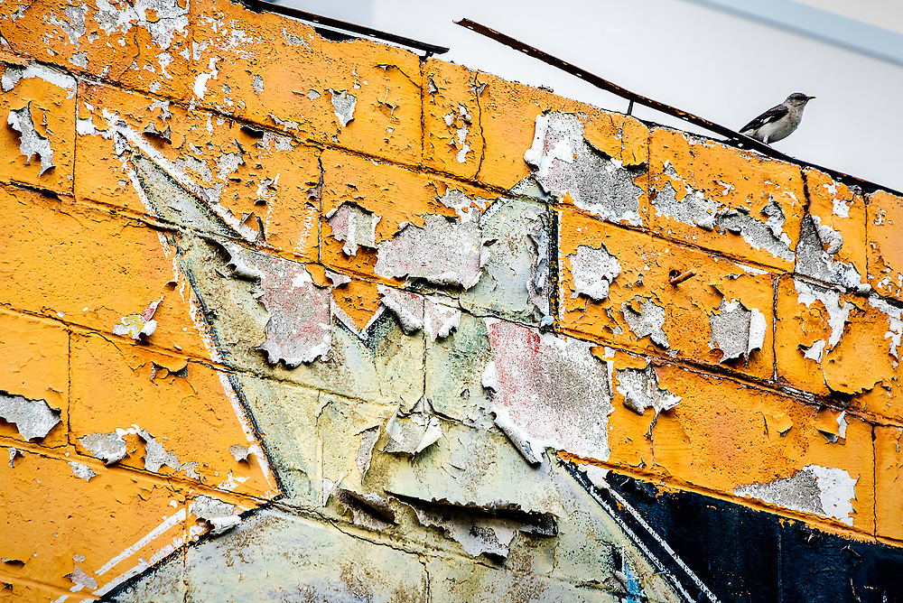 Abstract view of the right side of The Garage in Winston-Sallem, NC.