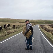 SHETLAND, SCOTLAND - APRIL 07, 2017: Robbie Burgess, a retired airport fireman, feeds his ponies in a field near Sumburgh. Despite his desire for an independent Shetland, Mr. Burgess has reservations about a future to the islands without a safety net from a more powerful nation. Prompted by Brexit and the prospect of a second independence referendum for Scotland, the fiercely independent Shetland Islanders are once again engaged in the debate on independence and autonomy. CREDIT: Paulo Nunes dos Santos for The New York Times