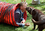 Westminster Dog of the Year 2016 <br /> in Victoria Tower Gardens, London, Great Britain <br /> 8th September 2016 <br /> organised by The Kennel Club and Dogs Trust together with dog loving MPs and Peers. <br /> <br /> Craig MacKinlay MP <br /> with his dog Libby <br /> <br /> <br /> <br /> <br /> <br /> <br /> Photograph by Elliott Franks <br /> Image licensed to Elliott Franks Photography Services
