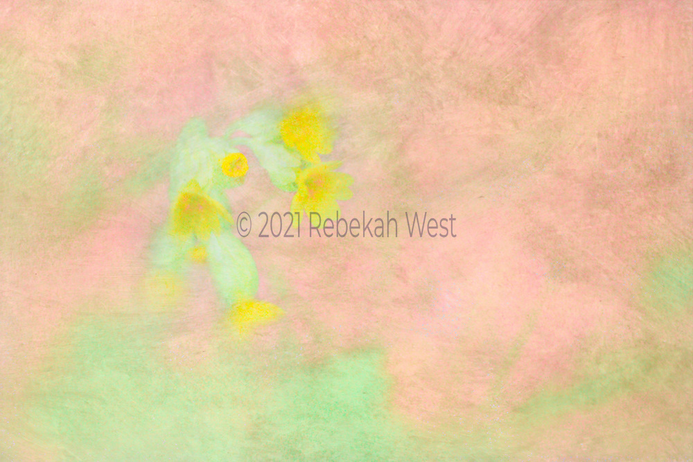 watercolor horizontal field of rosey pinks and clear tinted greens with a spray of green bulbed yellow flowers just opening orange spots of stamens, greenery undertones and overtones,greenery, flower art, feminine, high resolution, licensing, iridescent, horizontal, 3291 x 2194