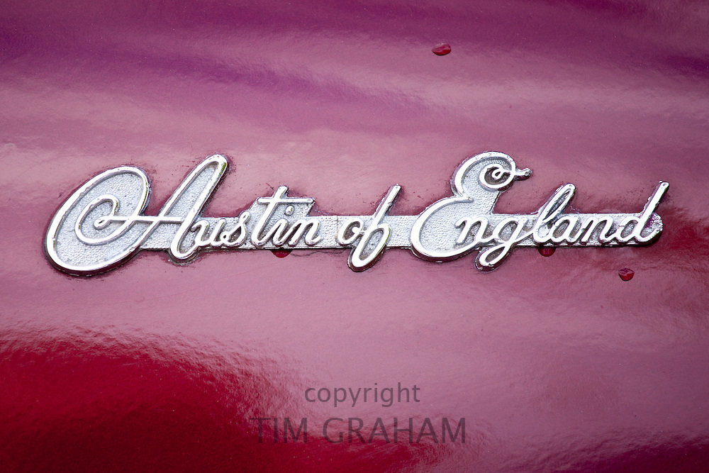Austin of England badge Logo of Austin Atlantic A90 car at classic car rally at Brize Norton in Oxfordshire, UK
