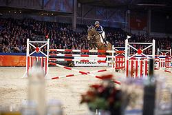 Van Gerwen Jody (NED) - Tantalus<br /> KWPN Stallion Selection - 's Hertogenbosch 2014<br /> © Dirk Caremans